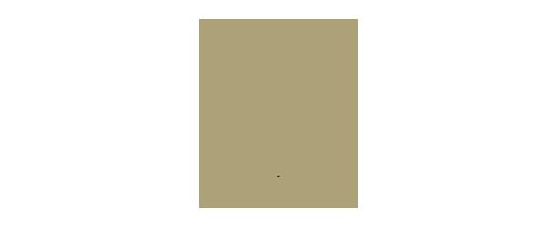 logo ICEF